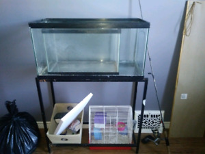 30 gallon tank with stand and 10 gallon tank