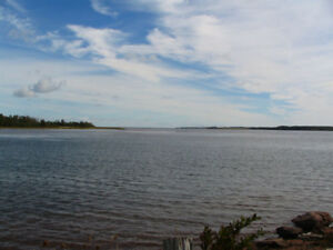 Look at this! Ocean front, River Phillip/Tony Bay