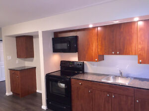 Newly renovated 1 Bedroom Basement Suite for Rent March 1