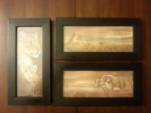 Beautiful Framed Animal prints