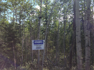 THREE 5 ACRE LOTS ON HOTPSRING RD! LISTED BY REALTOR® VAL SMITH