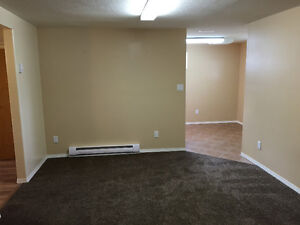 Bright 1 Bdrm Suite in Lacombe