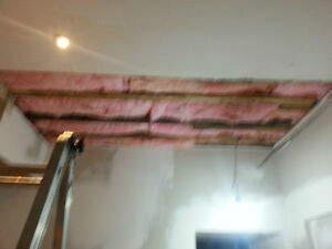 Water Damage Repair Kitchener / Waterloo Kitchener Area image 9
