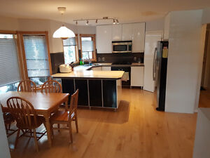 NON-SMOKING ROOMMATE WANTED - AWESOME HOUSE AND LOCATION