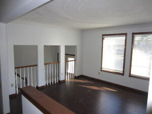 Large and Spacious house for rent (3 Bed,3 Bath)
