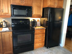 GE ceramic top, self cleaning oven black