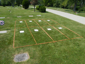 8 Adjoining Plots in Westminster Cemetery