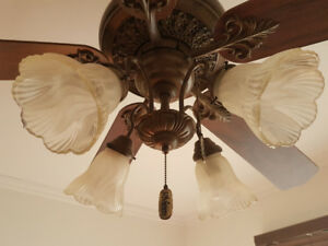Riviera ceiling fan 50$