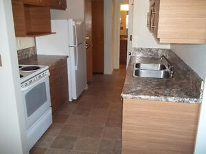 Large one bedroom apartment for rent near University of Regina