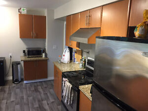 5 BDR 3 Bath- Renovated Home near UVIC - Quiet, Clean & Safe