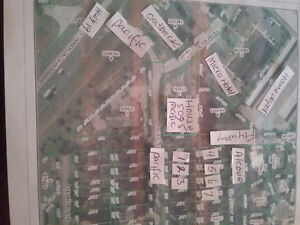 FLORIDA INVESTMENT 7 LOTS HIGH AND DRY SPRINGHILL34607 $50000 US