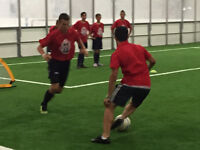 Turf Fields - adult and youth fall leagues! Sign up!