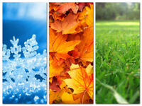 Snow removal Spring clean ups Discounted offers