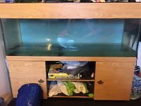 5ft seabray tank and unit