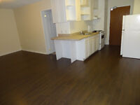 477 Parkside Dr. Waterloo - Updated Bachelor for May 1