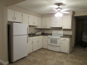 TWO BEDROOM FURNISHED APARTMENT call 430-0198