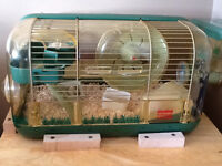 2 mini hamsters with cage