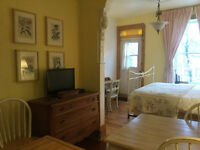 Charming studio in wonderful Plateau location - all equipped