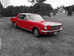1965 MUSTANG RED on RED