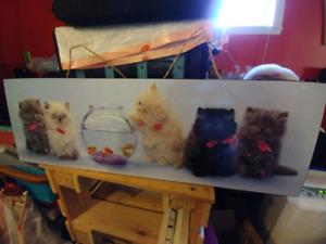 Cadres de chats