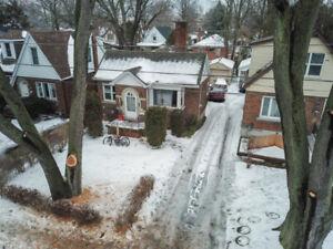 16 Thorndale Street North