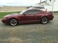 04 Mustang GT for trade