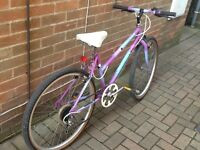 Raleigh Ladies Mountain Bike small frame