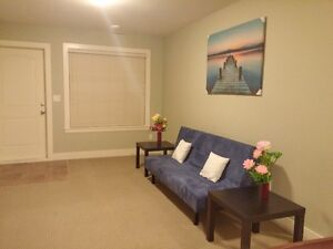 Brand New Fully Furnished 1 Bedroom unit in Port Coquitlam