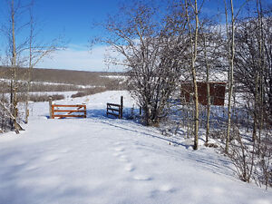 4.5 acre lot minutes from Dawson Creek