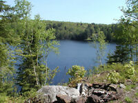 Over 2 acres of Privacy on Large Lake