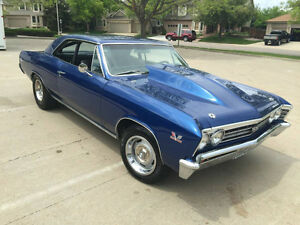 Wanted 1967 Chevelle SS Project