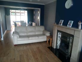 sofas (two)