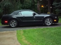 2013 Ford Mustang Cabriolet