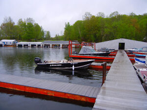 Lodge, Marina and Cabins for sale