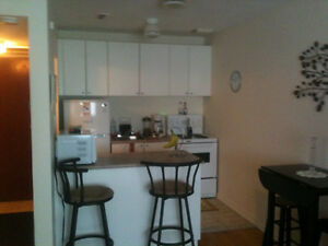1 Bedroom Apartment from $825  in Carlington area