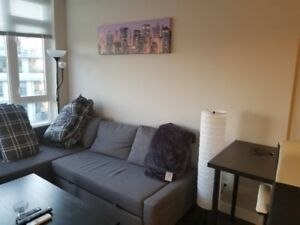 One Bedroom Fully Furnished Condo Available/ Short term rental