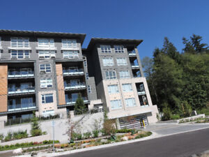 BRAND NEW CONDO FOR RENT ON BURNABY MOUNTAIN