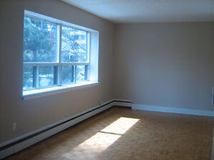Attractive 1 Bedroom Apartment at Great Park St. S. Location