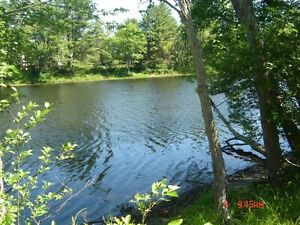 256 ft. waterfront on Madawaska river with newer 3 BR home