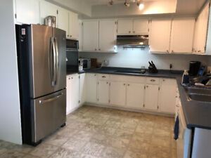 Kitchen Cabinets Kijiji In London Buy Sell Save With