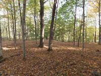 Large Wooded Estate Lot in Four-Season Lakeside Community