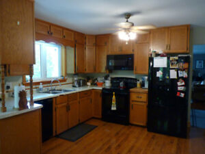 Kitchen Cabinets  - SOLD