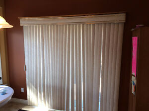 Window Blinds For Patio Door