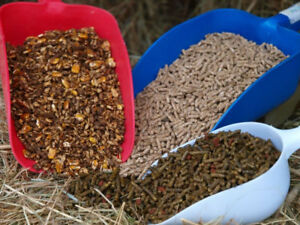 Double D Tack Shop Carries Purina Livestock Feeds