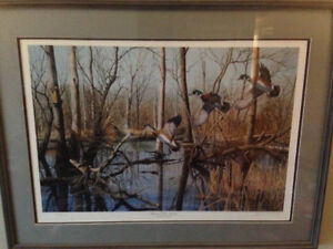 Ducks Unlimited signed framed Print - Flooded Timber Woodies