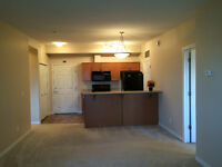 Large & quiet 2 bedrooms condo available near west end