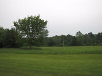 Beautiful 6 Acres of Land for Sale