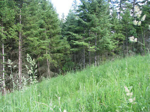 Build your dream home in one of Williams Lakes finest locations Williams Lake Cariboo Area image 9