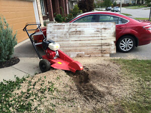 TREE STUMP REMOVAL/GRINDING >book now and save $$$$$ Kitchener / Waterloo Kitchener Area image 7