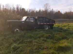 1979 chev dumptruck $800 open to trade